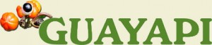 logo_guayapi